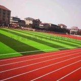 承接连云港体育运动场工人草坪一体化施工