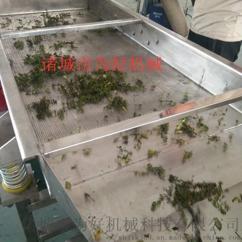 花椒不锈钢振动筛  振动沥水筛 食品振动筛