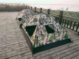 运动新款双人数码迷彩双人单兵帐篷 野营户外帐篷