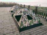 運動新款雙人數碼迷彩雙人單兵帳篷 野營戶外帳篷