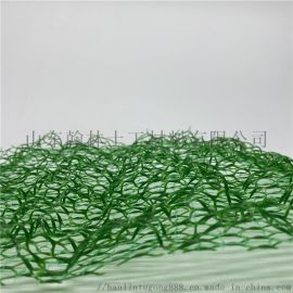 保护植被护坡网国标三维植被网