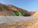 【荣创温室】延安包塑椭圆管大跨度养殖拱棚工程案例