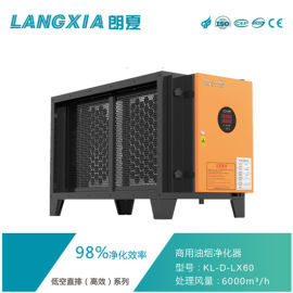郎夏油烟净化器 6000处理风量厨房油烟净化器设备