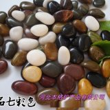 黑色特级抛光雨花石 五彩石 花卉鱼缸园林铺路鹅卵石