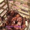 供應蘑菇石 黑色火山石一面切單切可定製各規格文化石