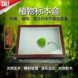標本盒/實木/漆布/昆蟲植物標本盒/廠家批發定製