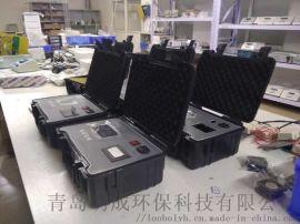 全自动测量实时显示浓度值油烟检测仪