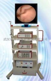 腹腔内窥镜,狼牌宫腔镜系统