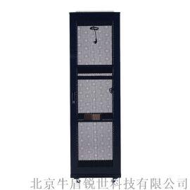 42U网络服务器机柜 机柜厂家可定制各种参数