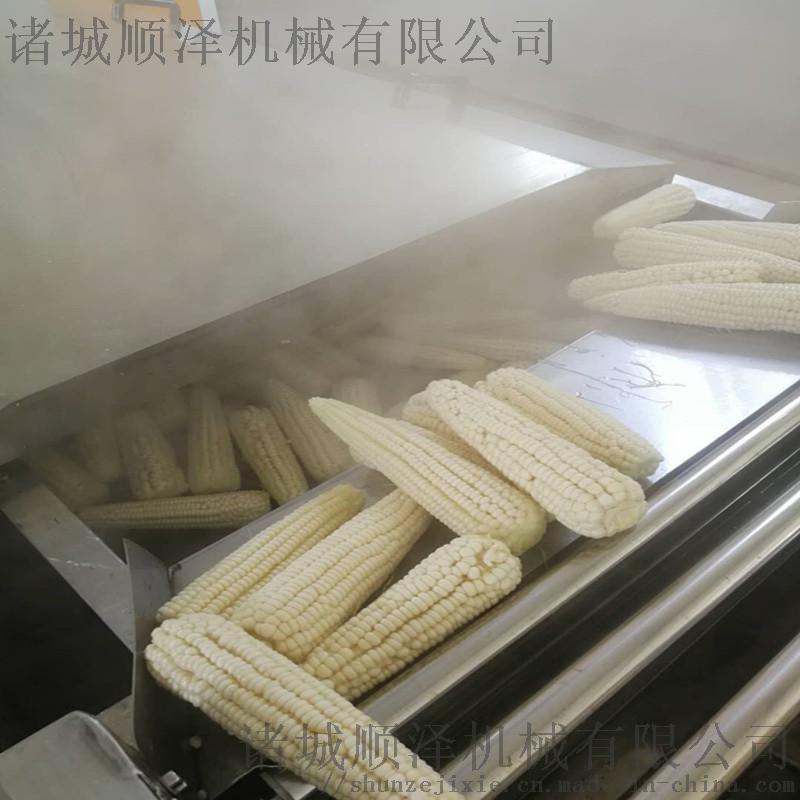 水果玉米漂燙蒸煮機 玉米預煮漂燙機 玉米加工生產線