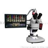 XTL-7045TJ1-960HD型光学体视显微镜