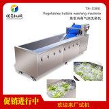 騰昇氣泡蔬菜清洗機 水果清洗機 酒店食堂洗菜機