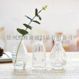 小花瓶水養綠植簡約花瓶創意迷你花瓶小號桌面裝飾
