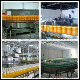 ZYL调配型: 果汁饮料整套设备 小型加工饮料机械设备