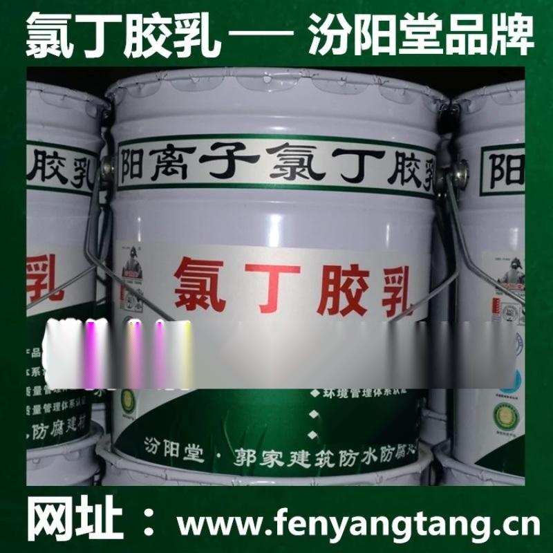 氯丁膠乳/雙組份水性陽離子氯丁膠乳液灌漿料/汾陽堂
