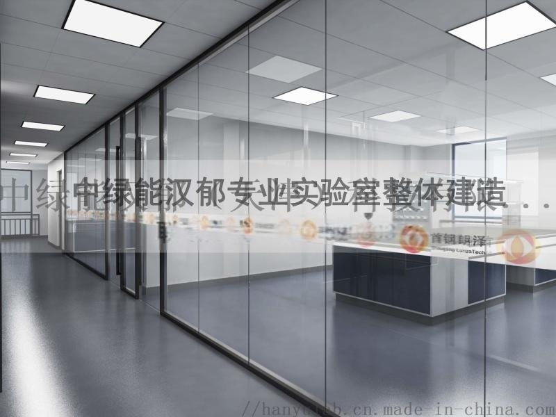 中綠能漢鬱理化實驗室的設計與佈局