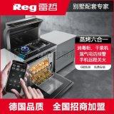 Reg/雷哲集成灶蒸烤箱一体下排式抽油烟机燃气灶一体灶家用智能K6