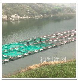 湖南星鑫 大型水面深水网箱 养鱼网箱 水上养殖网