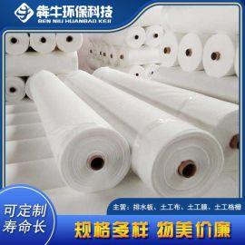 广州养护土工布厂家 反滤土工布 短丝土工布 可定制