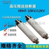 高壓限流熔斷器變壓器保護