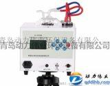 双路大气恒流采样器DL-6600