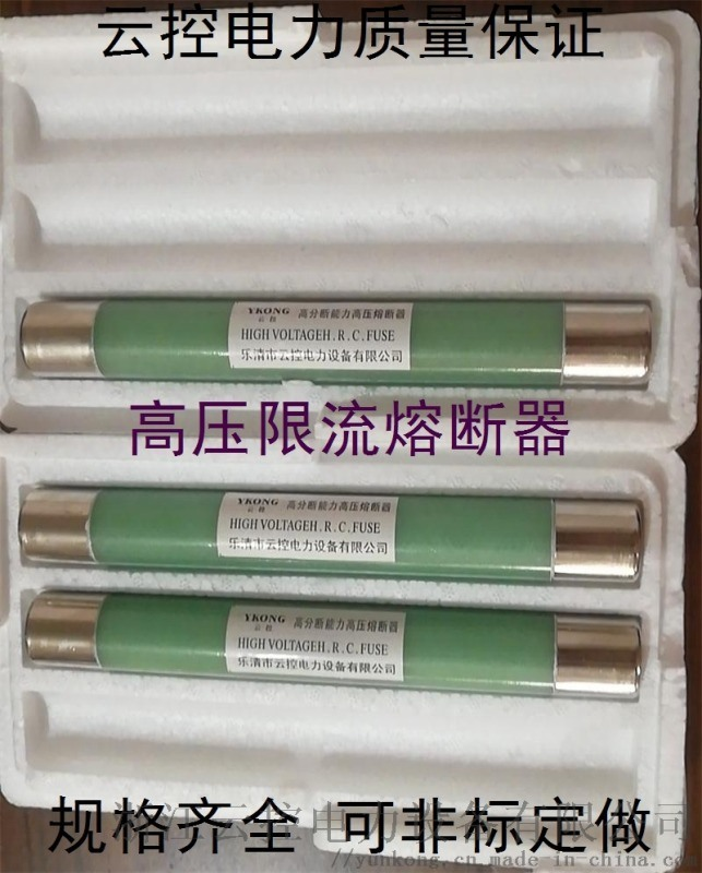 高壓限流熔斷器 XRNT-12保險管