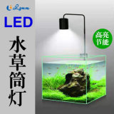 小型桌面鱼缸照明 微景观水草植物LED筒灯