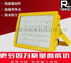 CCD97防爆免维护LED泛光灯(LED防爆路灯)