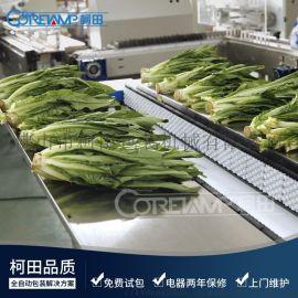 蔬菜包装机 枕式包装机械 叶菜水果包装设备