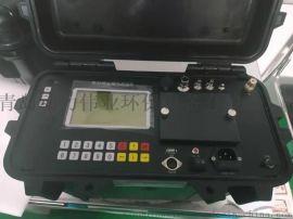 点阵液晶大显示DL-6300烟尘烟气测试仪