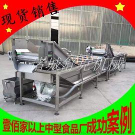 商用专业定制多功能新疆红枣喷淋清洗机