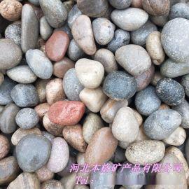 本格供应 机制鹅卵石 变压器鹅卵石 公路鹅卵石