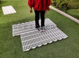 养殖鸭用塑料漏粪板漏粪网板