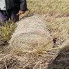 5080小麦秸秆打捆机,秸秆捡拾打捆机厂家直销