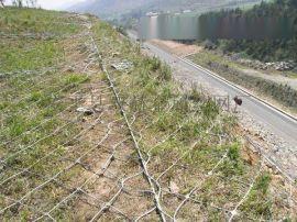 山體專用護坡網¥綿陽山體專用護坡網¥山體專用護坡網廠家