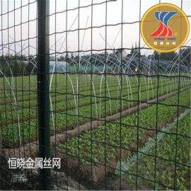 厂家现货批发低价散养鸡围网护栏 养鸡围栏 浸塑荷兰网电焊网