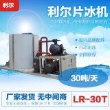 利尔30吨片冰机 大型工业混泥土降温用30吨片冰制冰机