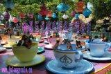 河南巨龙游乐设备咖啡杯游乐设施 厂家 价格