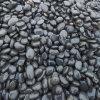 鹅卵石_8-15cm天然黑色鹅卵石价格_渝荣顺!