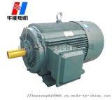 直销华能电机YE2-100L3kw高效节能电机