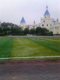 湖南人造草坪足球场施工足球场人造草坪