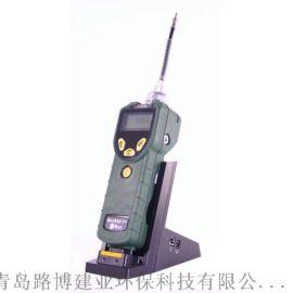 美国华瑞MiNiRAEVOC检测仪PGM7300