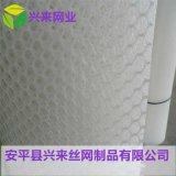 白色养殖专用网 家禽养殖网 优质塑料平网