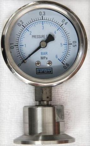 布莱迪YTNP-100HF6卫生型压力表