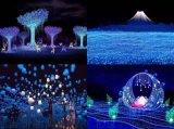 北京大型彩燈設計製作裝飾實力公司承接燈光展合作