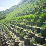 盐渍土膨胀土修筑公路稳固加筋斜坡绿化种植土工格室