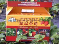 草莓小彩箱(水果  礼盒)