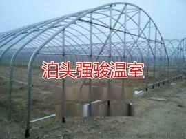 厂家供应椭圆管骨架大棚钢骨架