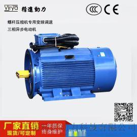 螺杆压缩机专用电机Virya
