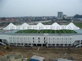 膜结构看台体育场顶棚罩棚